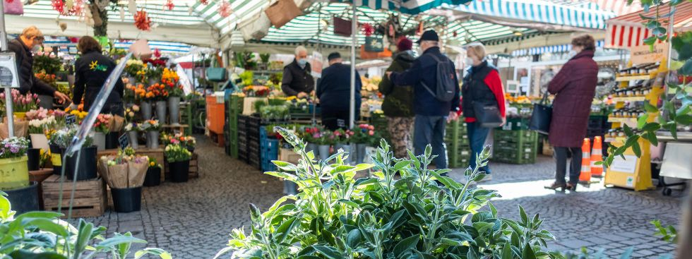 Der Pasinger Viktualienmarkt im Frühling, Foto: Anette Göttlicher