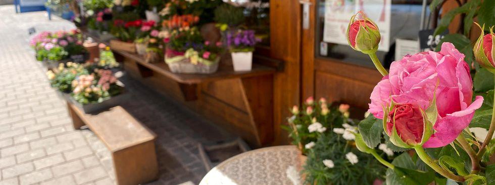 Blumen am Wienermarkt, Foto: Anette Göttlicher