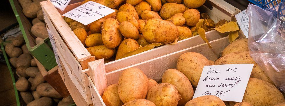 Kartoffeln, Foto: Anette Göttlicher