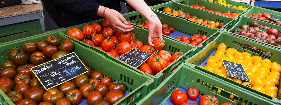 Tomaten vom Viktualienmarkt, Foto: Anette Göttlicher