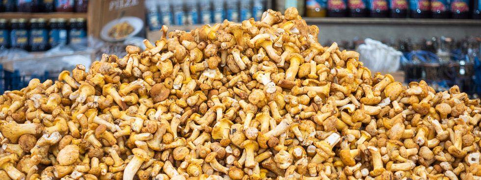 Schwammerlzeit auf dem Viktualienmarkt, Foto: Anette Göttlicher