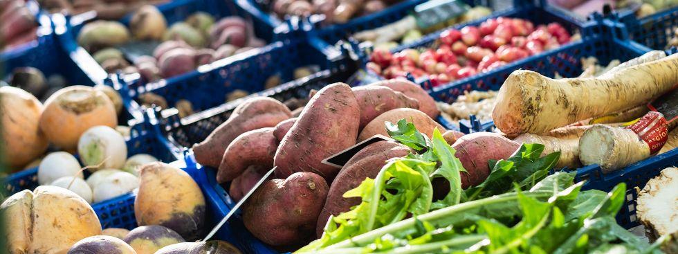 Gemüse auf dem Viktualienmarkt, Foto: Anette Göttlicher