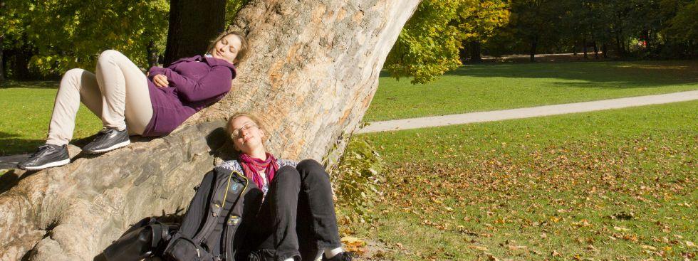 Herbst im Englischen Garten, Foto: Katy Spichal