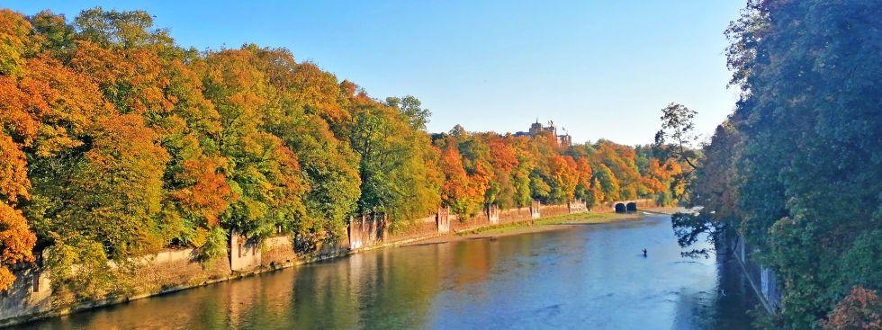 Herbst in den Isarauen, Foto: muenchen.de/Leonie Liebich
