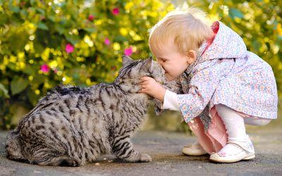 Kleinkind herzt Katze
