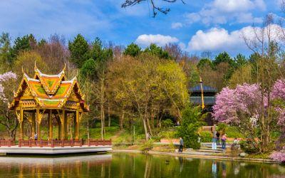 Thai Sala im Westpark mit rosa Bäumen
