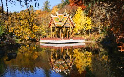 Herbst im Westpark