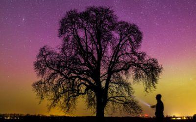 Polarlichter am Nachthimmel über Deutschland