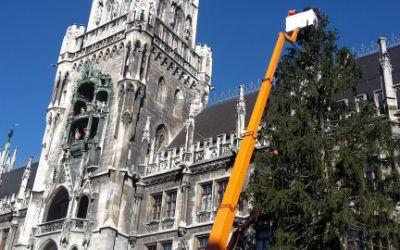 Der Christbaum auf dem Marienplatz