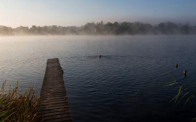 Der Weßlinger See