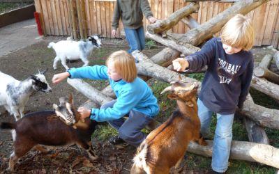Die Kinder- und Jugendfarm in Ramersdorf.