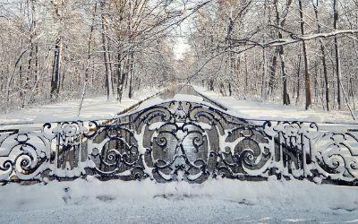 Winter im Schlosspark Nymphenburg
