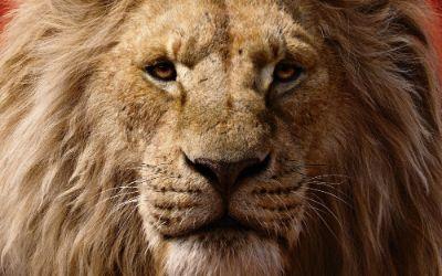 Der König der Löwen - Plakatmotiv