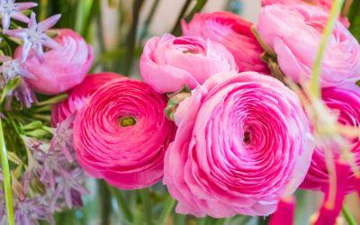 Blumen, Muttertag