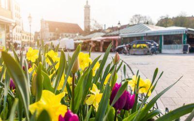 Der Viktualienmarkt im Frühjahr