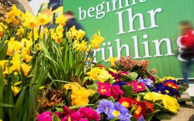 Blumen auf der Gartenmesse in München