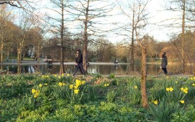 Frühlingszauber im Westpark