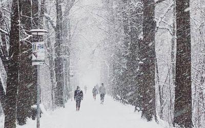 Schneefall in den Isarauen in München