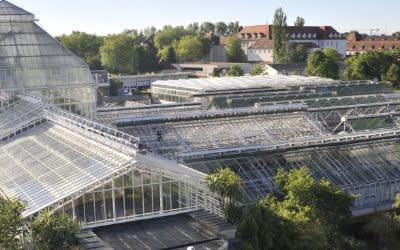 Das Gewächshaus im Botanischen Garten