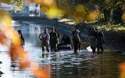 Fischer vom Fischereiverein Odelzhausen stehen beim Abfischen im Schlosspark Nymphenburg im Nymphenburger Kanal