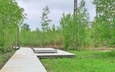 Der neue naturnahe Park in Baumkirchen Mitte in Berg am Laim