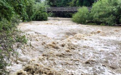 Isar-Hochwasser am Flaucher - 29.7.2019