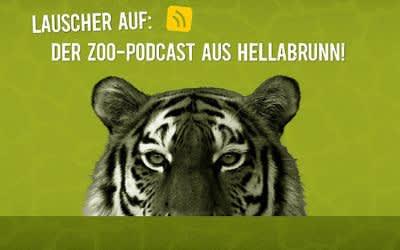 Logo des Zoo-Podcasts aus dem Tierpark Hellabrunn