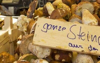Pilze im Verkauf am Viktualienmarkt