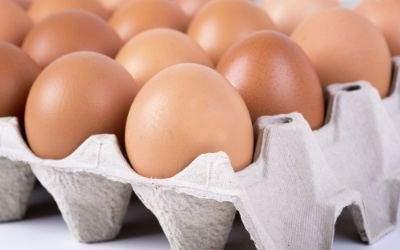Eine Palette Eier