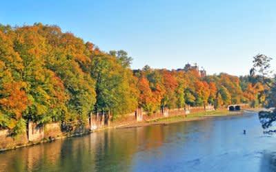 Herbst in den Isarauen