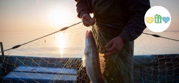 Fischernetz und Fisch