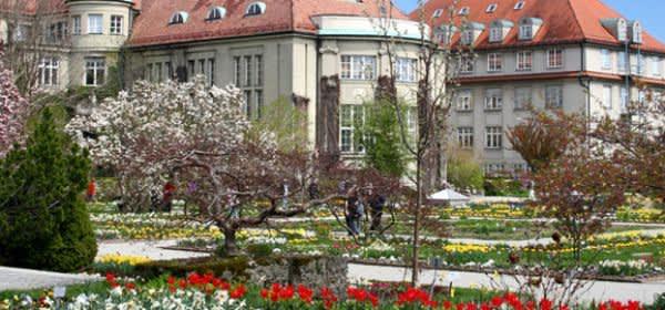Botanischer Garten Blütenpracht