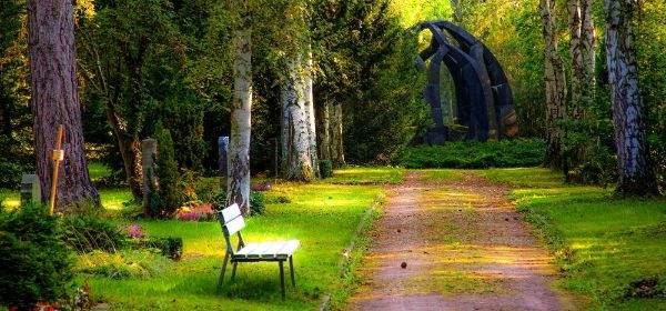 Bank im Sonnenschein in einem Park
