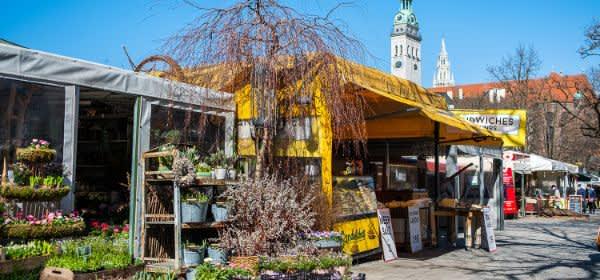 Frühling auf dem Viktualienmarkt