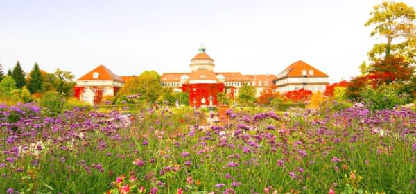 Der Botanische Garten in München