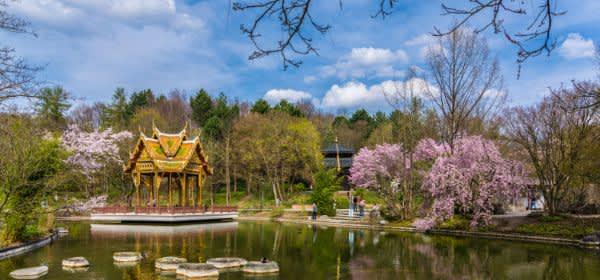 Westpark Thai Sala