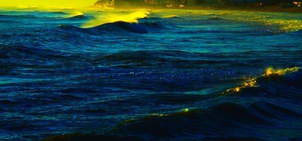 "Jean Luc Godard ""Le livre image - the image book"""