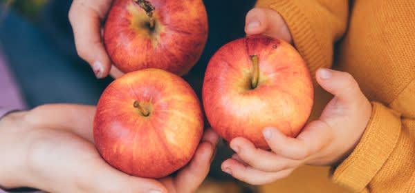 Rote Äpfel in Kinderhänden