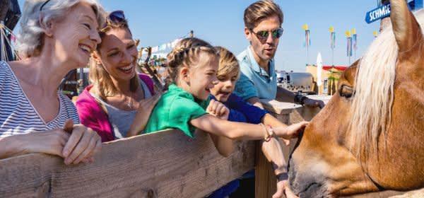 Familie streichelt Pferd im Cavalluna Park