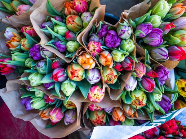 Blumen vom Viktualienmarkt