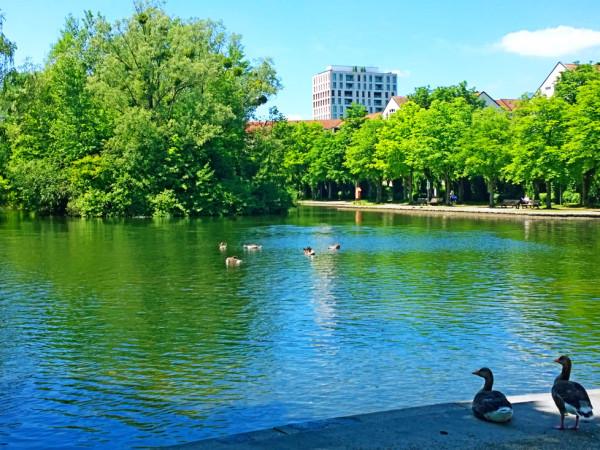 Der Schwabinger See in München