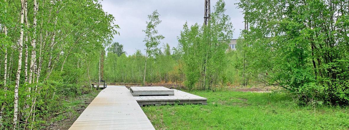 Der neue naturnahe Park in Baumkirchen Mitte in Berg am Laim, Foto: muenchen.de / Philipp Hartmann