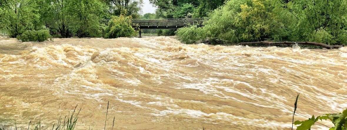 Hochwasser am Flaucher, Foto: muenchen.de/Gunnar Jans
