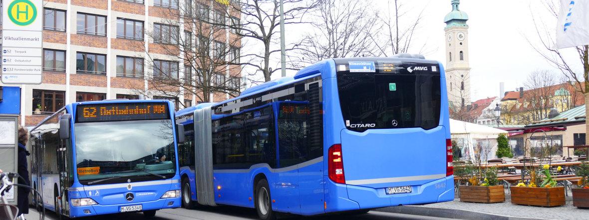 Busse der Linie 52 und 62 an der Haltestelle Viktualienmarkt, Foto: muenchen.de/Mark Read
