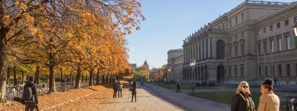Hofgarten im Herbst bei der Residenz, Foto: muenchen.de/Lukas Fleischmann