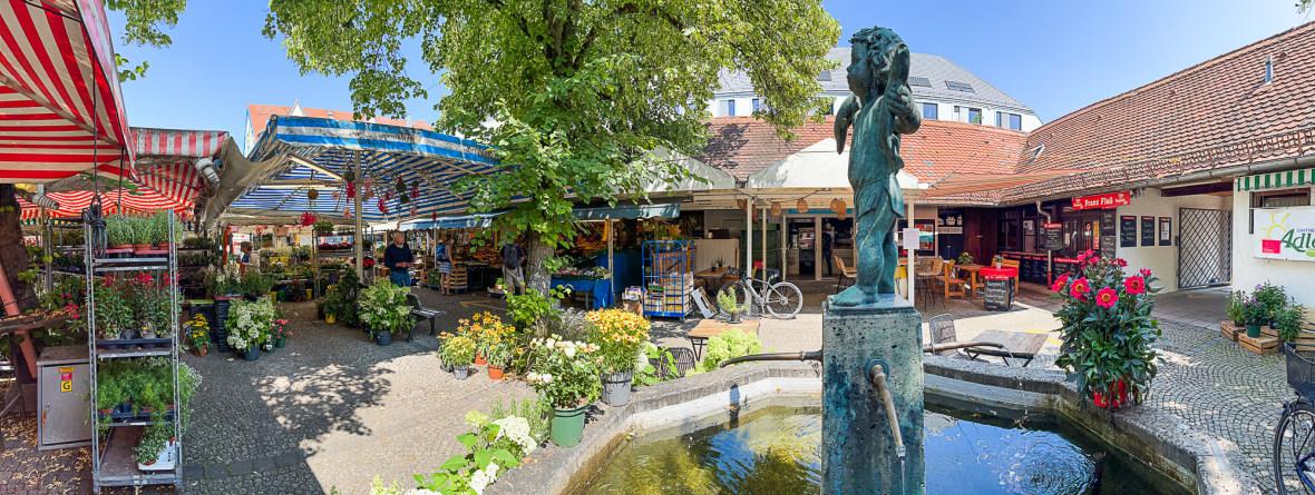 Pasinger Viktualienmarkt, Foto: Anette Göttlicher