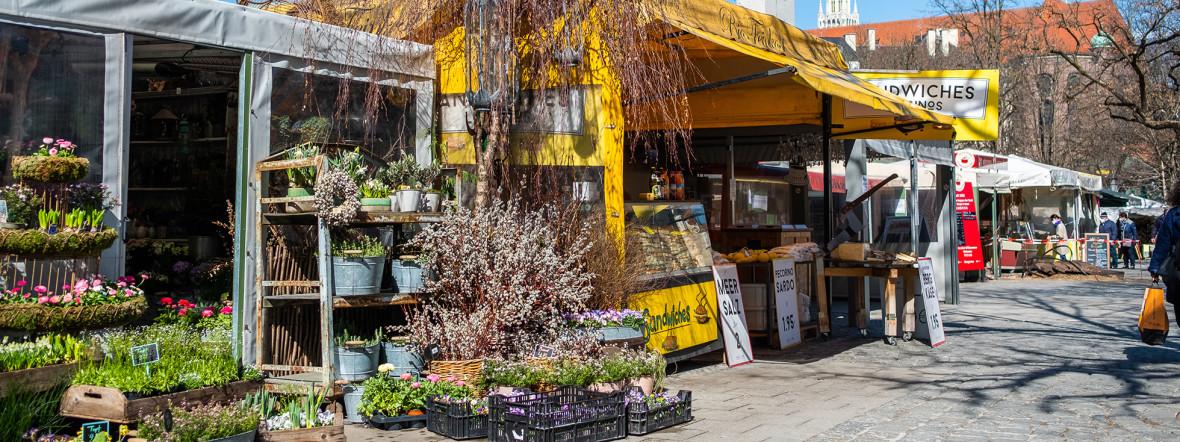 Frühling auf dem Viktualienmarkt, Foto: Anette Göttlicher