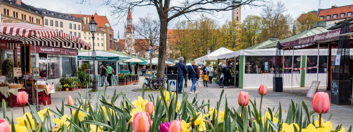 Der Münchner Viktualienmarkt im Frühjahr, Foto: Anette Göttlicher