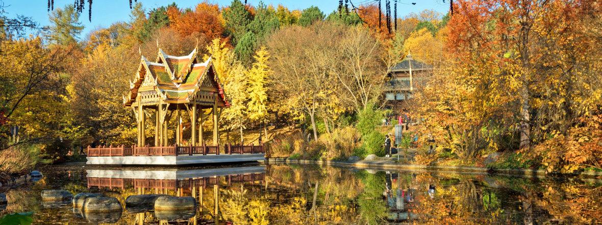 Herbst im Westpark, Foto: shutterstock_334071911 2016