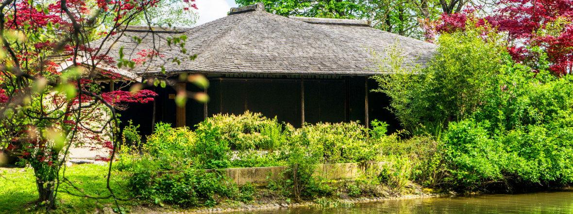 Das japanische Teehaus im Englischen Garten, Foto: muenchen.de/Lukas Fleischmann